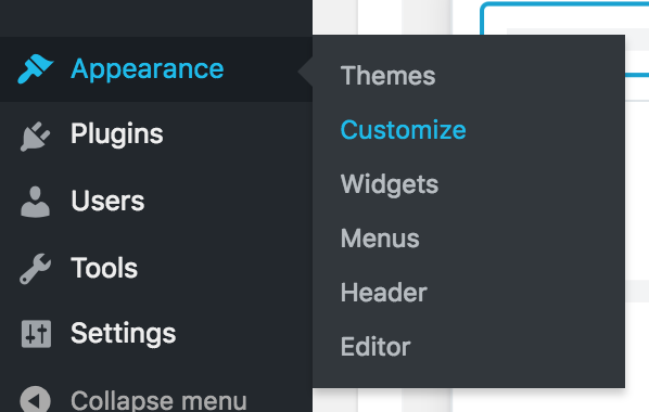 wordpress appearance customize