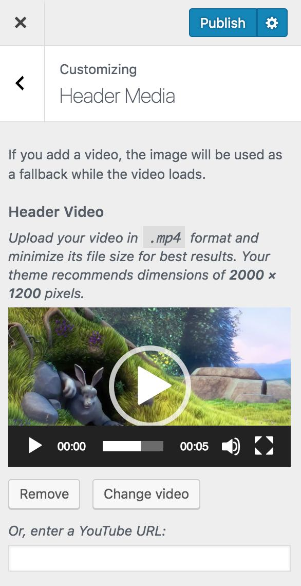 wordpress appearance customize header video