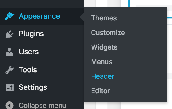 wordpress appearance header